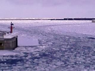 紋別港内の流氷